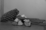Black and white photo of a pinecone and rocks with driftwood.